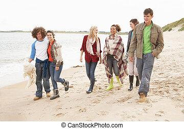camminare, shoreline, giovane, autunno, gruppo, lungo, amici