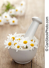 camomile flowers in mortar