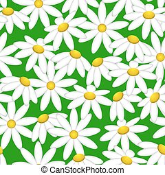 Camomile on a green background. Pattern seamless