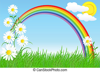 Camomiles with green grass and rainbow