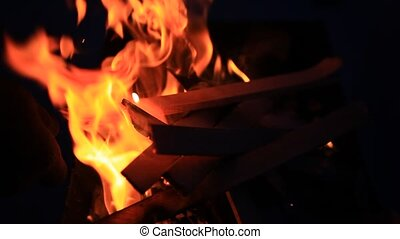 Camp fire burning at night in winter with sound