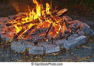 camp fire - Campfire while camping with wood at night