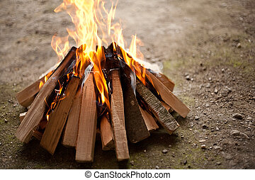 Camp fire - Close up of burning camp fire, shallow depth of...