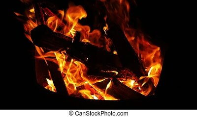 Camp Fire Flames - Camp fire burning in the night in 60fpos
