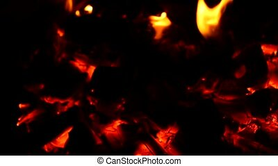 camp fire barbecue
