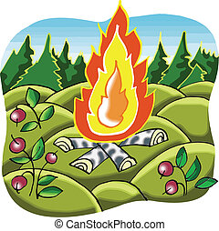 Camp Fire in forest