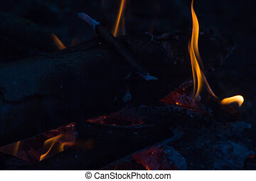 Camp fire in the night. Languages fire closeup