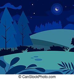 camp, scène, nuit
