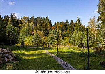 campagna, bello, spazio sosta, natura