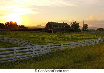 campagna, condurre, ranch, recinto