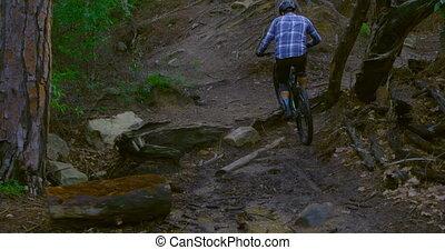 campagne, équitation, forêt, vélo, homme, 4k