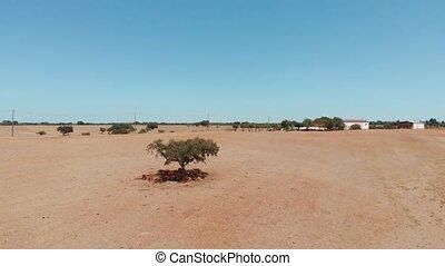 campagne, aérien, vue., aride, portugal, climate.