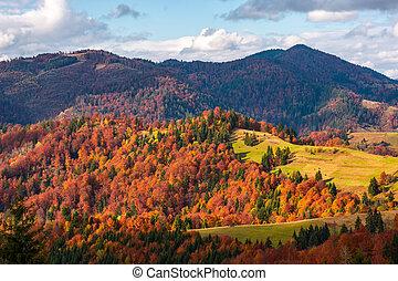 campagne, rural, automne
