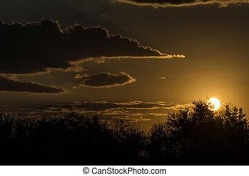 campagne, tard, clair, coucher soleil, orange