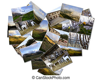 Campaign - Pictures of nature and the countryside in collage...