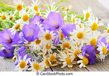 Campanula and chamomile flowers on table - Campanula and ...