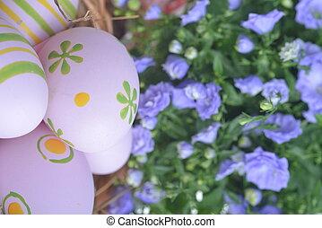 campanula flowers  - blue campanula flowers  and easter eggs
