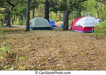 campeggio, e, tende, parco