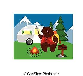 campeggio, orso