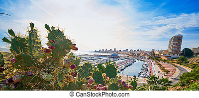 Campello skyline and marina Alicante