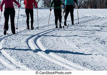 campestre, sport, inverno, sciare