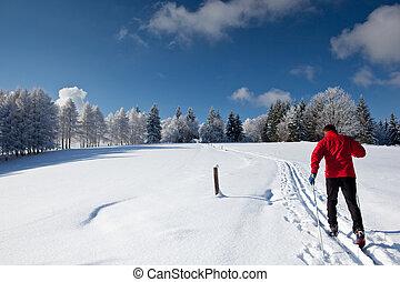 campestre, uomo, giovane, sciare