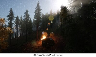 campfire at mountain rorest at night