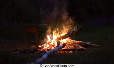 Campfire burning at summer night forest - traveling concept