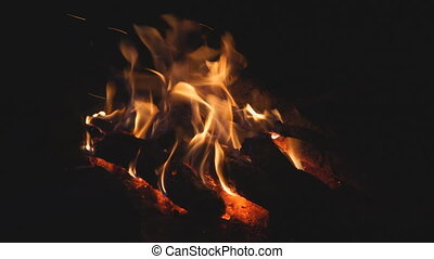 Campfire burns in the night
