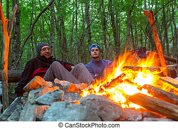 Campfire - campfire in spring forest