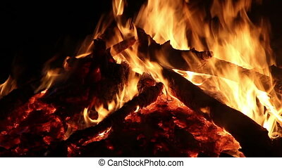 Campfire - close-up big campfire