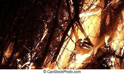 close-up big campfire