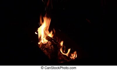 Campfire - Fire burning in outdoor pit.