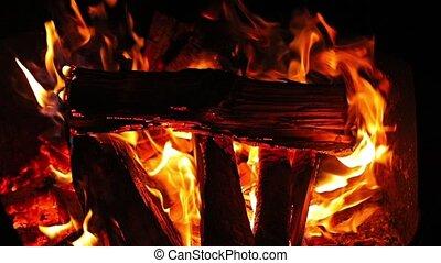 Campfire flames closeup