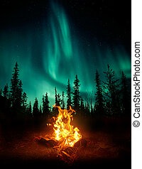 Campfire In The Wilderness With The Northern Lights - A warm...