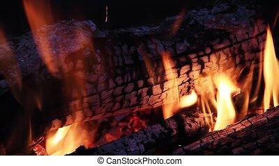 Campfire Loop #4