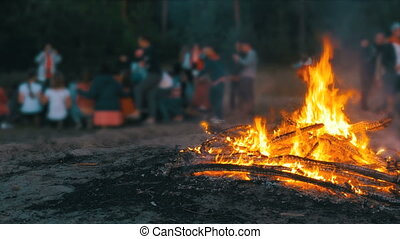 Campfire of the Branches Burn at Night in the Forest on the...