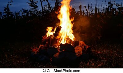Campfire stock footage - Campfire in the evening