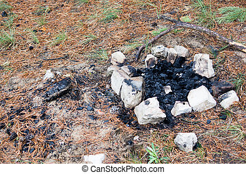 campfire strewn with stones in a pine forest