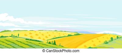 campi, frumento, paesaggio, fondo, panorama
