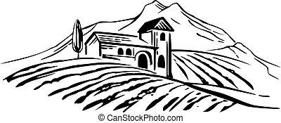 campi, hills., vendemmia, villa, illustrazione, vigneto, vettore, paesaggio rurale