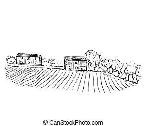 campi, houses., paesaggio