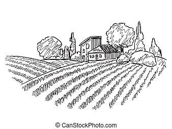 campi, paesaggio