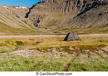 Camping in the Icealnd