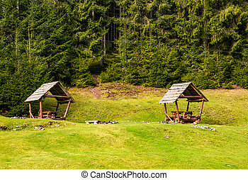 camping place on a glade in forest. lovely leisure scenery...