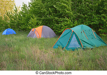 Camping tent in the forest