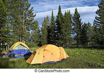 Camping tents - tents in Teton National Park, Wyoming, USA