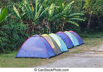 campingplatz, zelt, morgen
