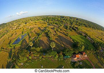 campo, aéreo, camboyano, vista