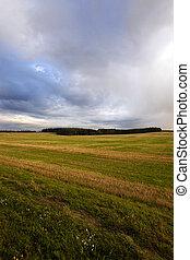 campo agrícola, ., pôr do sol